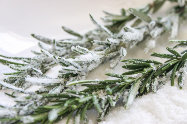 Candied Rosemary