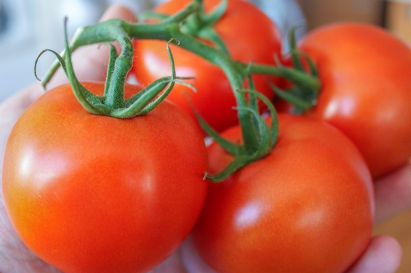 How to Keep Tomatoes Fresh Over a Week