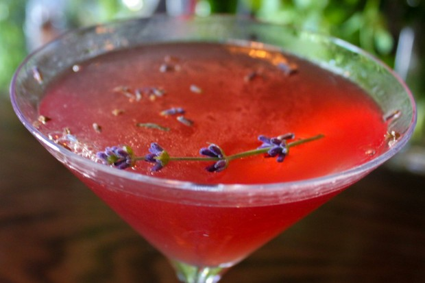 Organic Lavender Cocktail Main