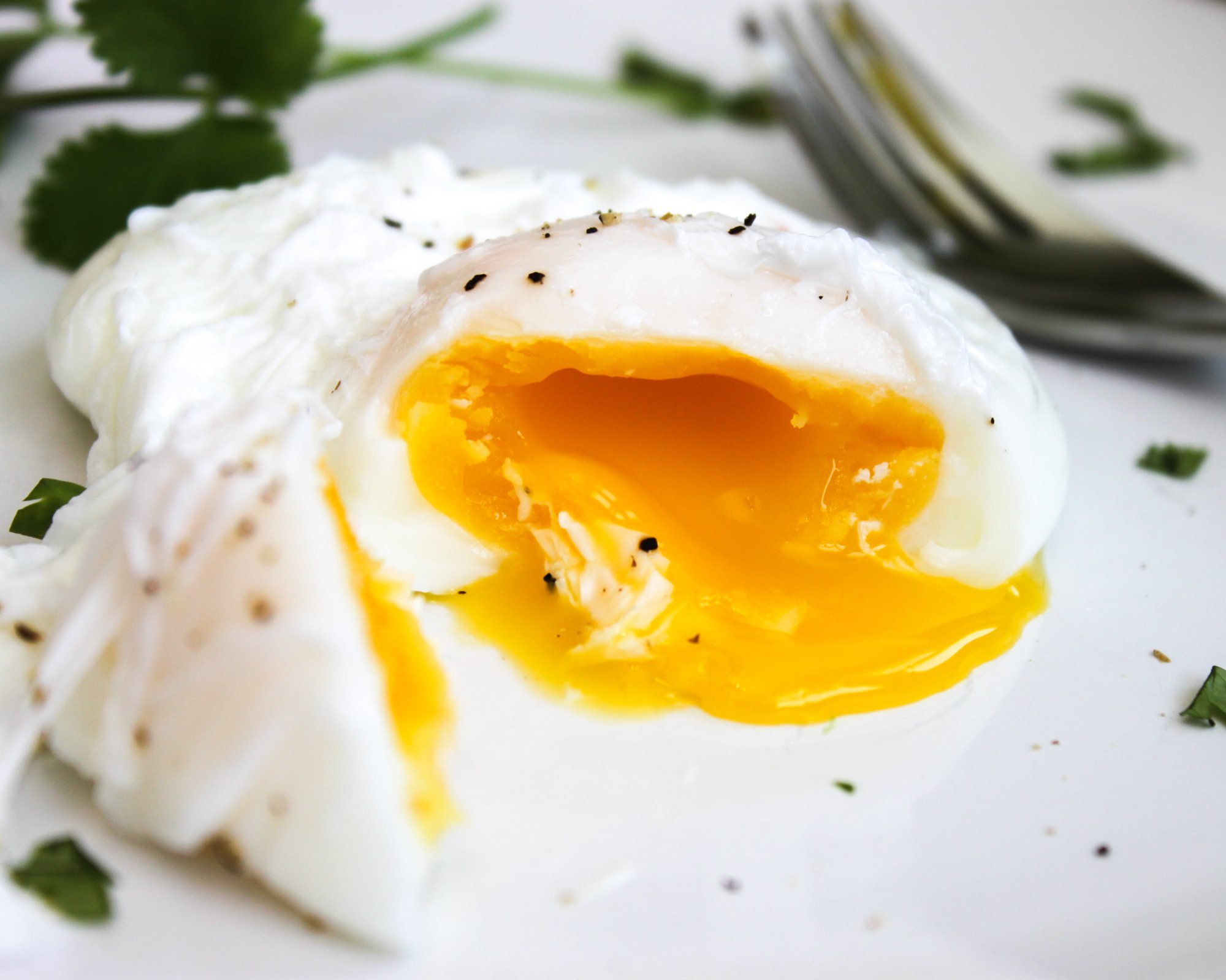How to Poach an Egg Perfectly Every Time - Jerry James Stone