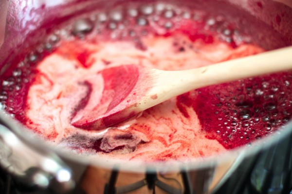 Plum & Pinot Noir Sorbet - Cooking Stoned