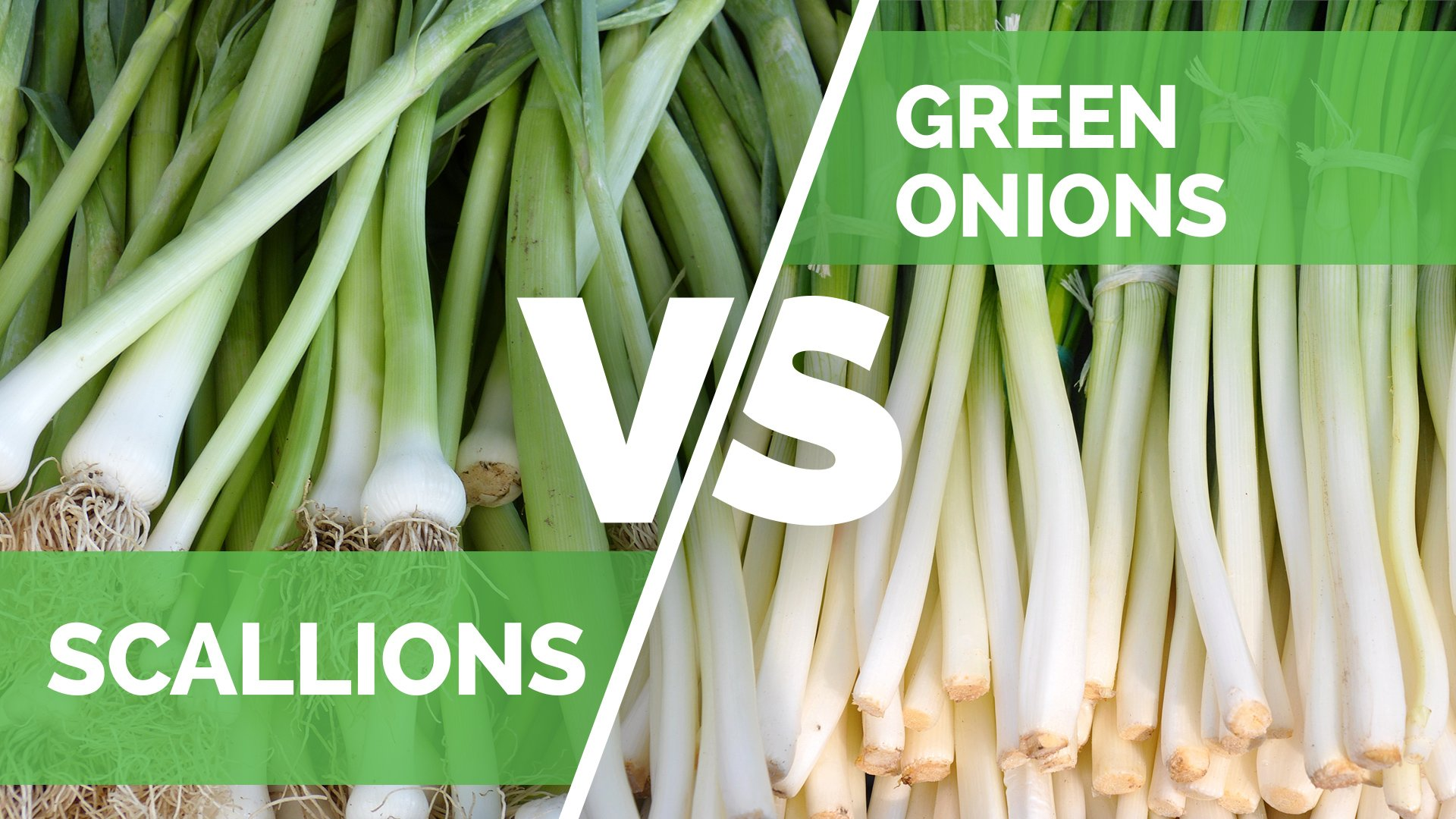 scallions vs green onion - what is the difference