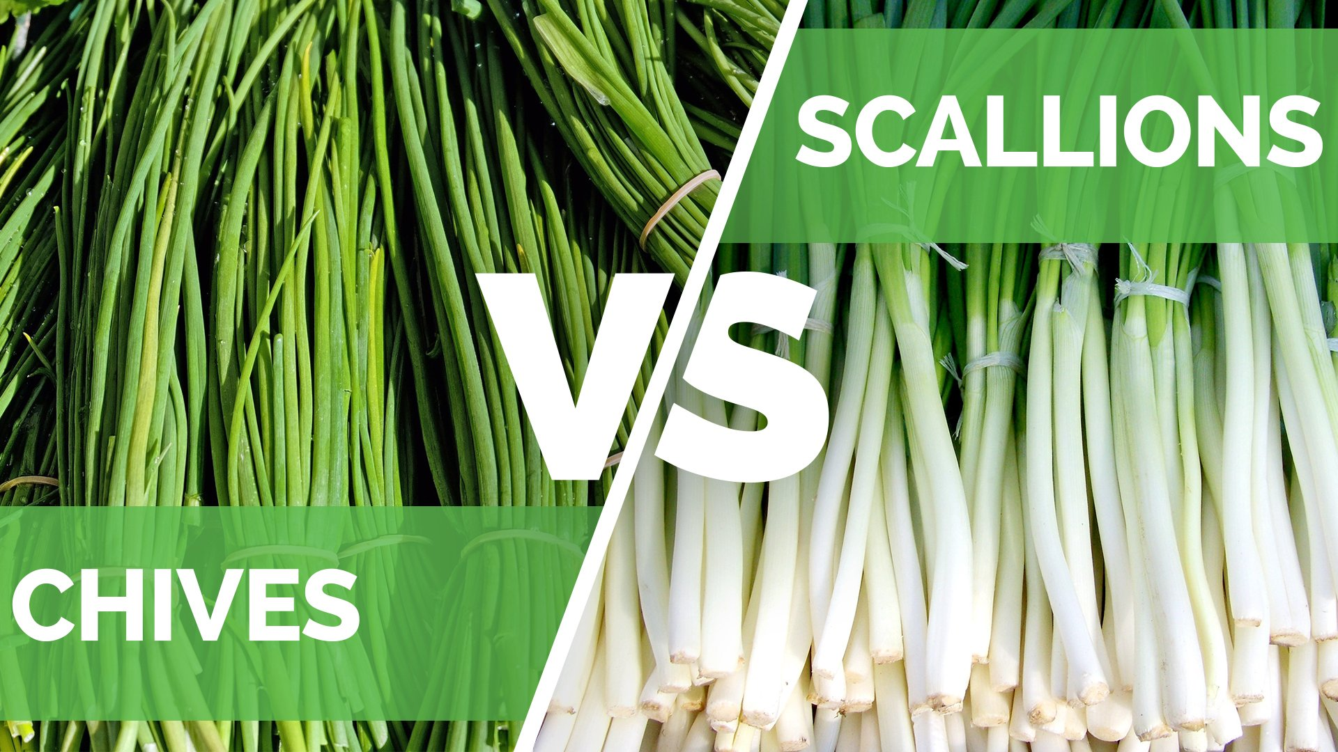 Chives vs Scallions - What's the Difference