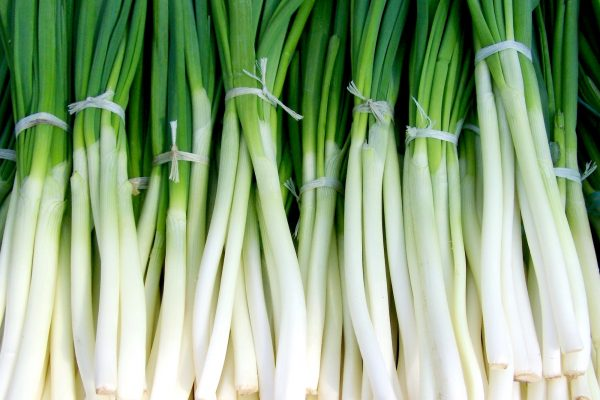 How to Buy Scallions (Green Onions)-VIdeo