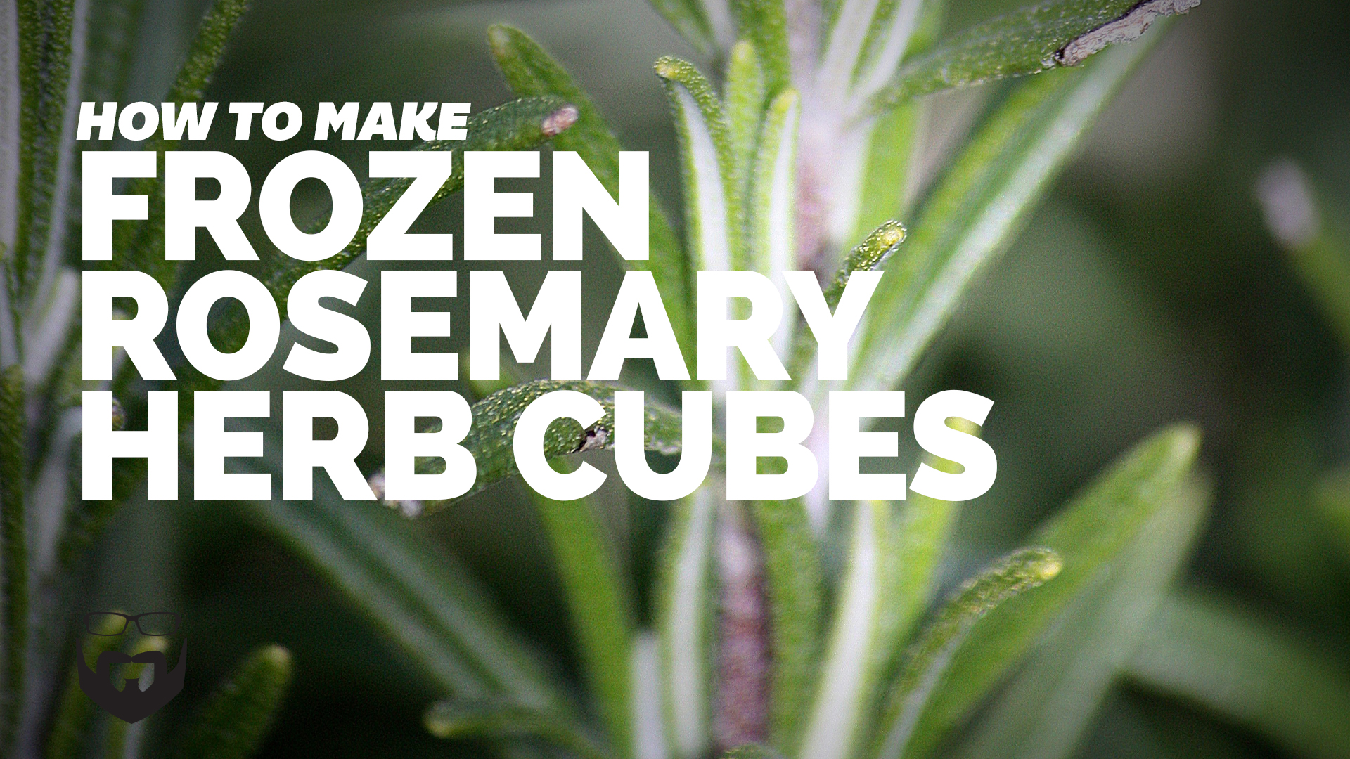 How to Make Frozen Herb Cubes with Rosemary-Video