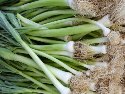 How to Chop Scallions (Green Onions) for Garnish