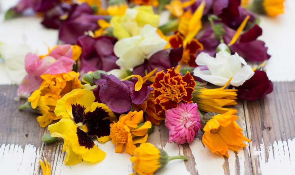 Edible Flowers 2