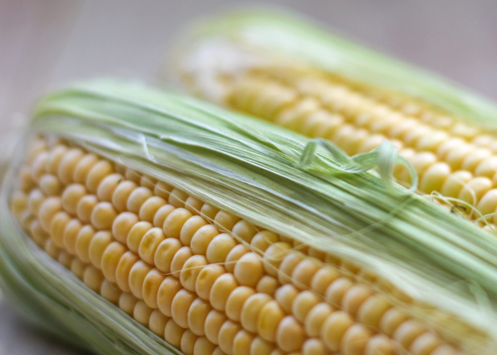 Fresh Corn 1