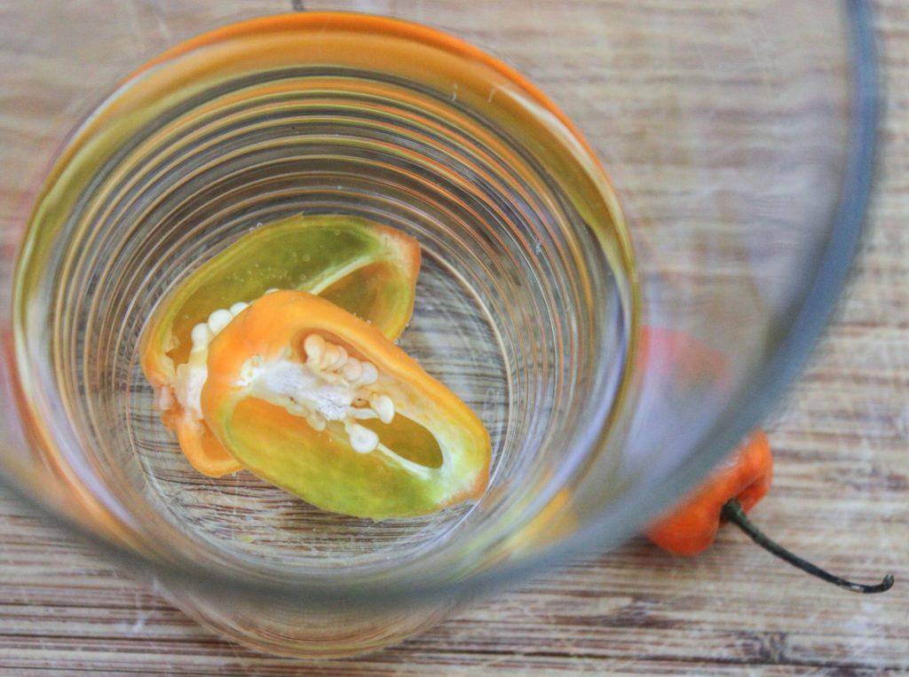 Habanero Tequila 1