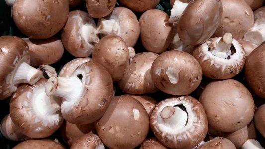 How to Freeze Mushrooms Main