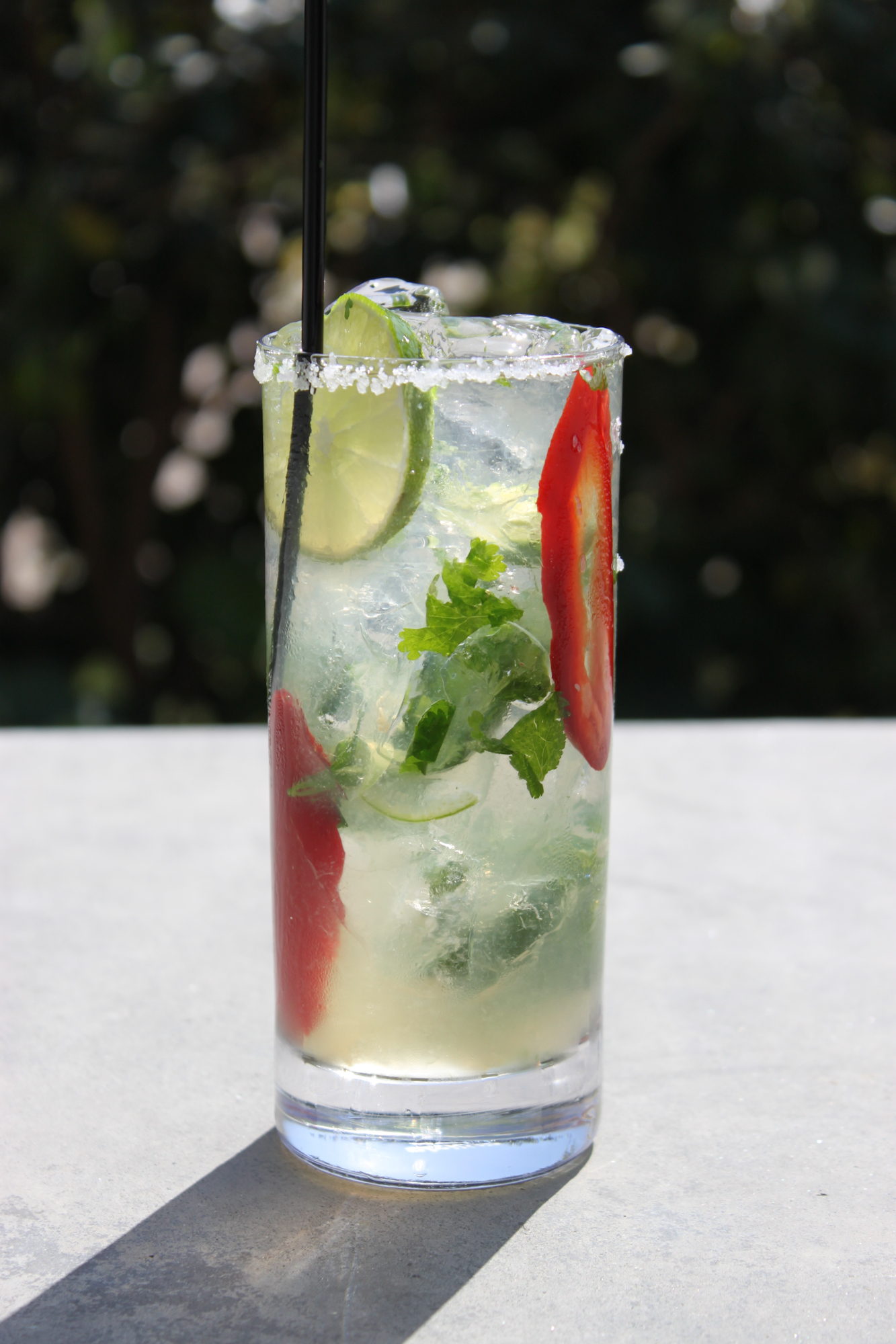 Jalapeno and Cilantro Margarita 4 3