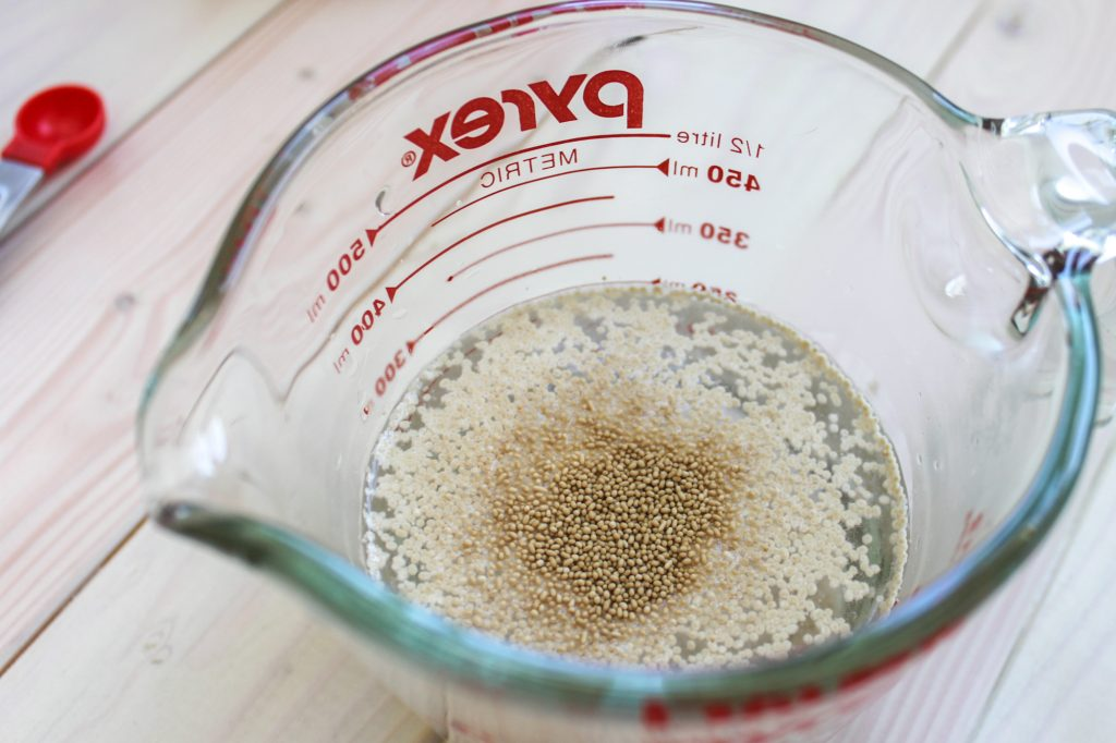 Proofing Yeast 1