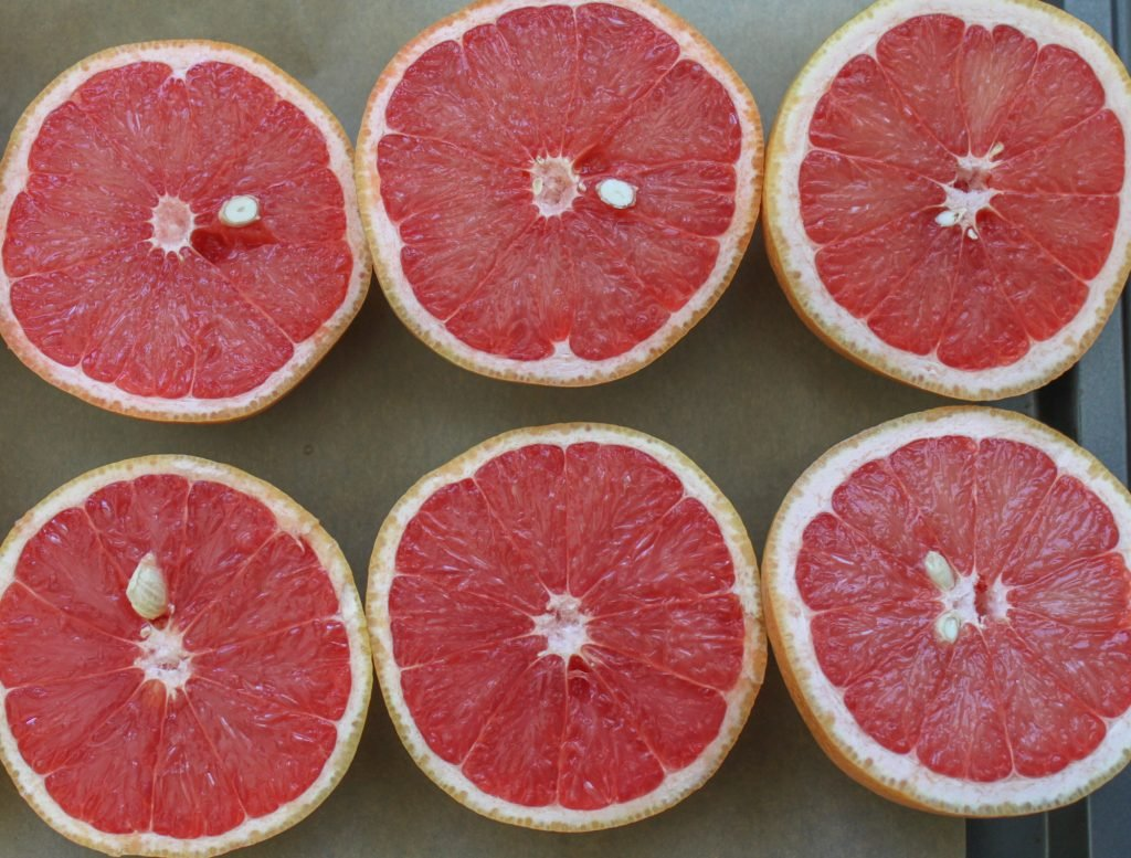 Sliced Grapefruits 1