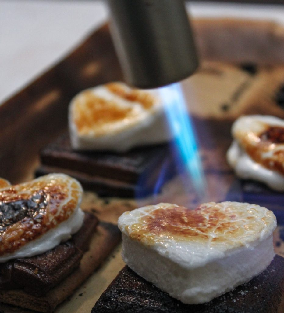 Toasting Marshmallow 1