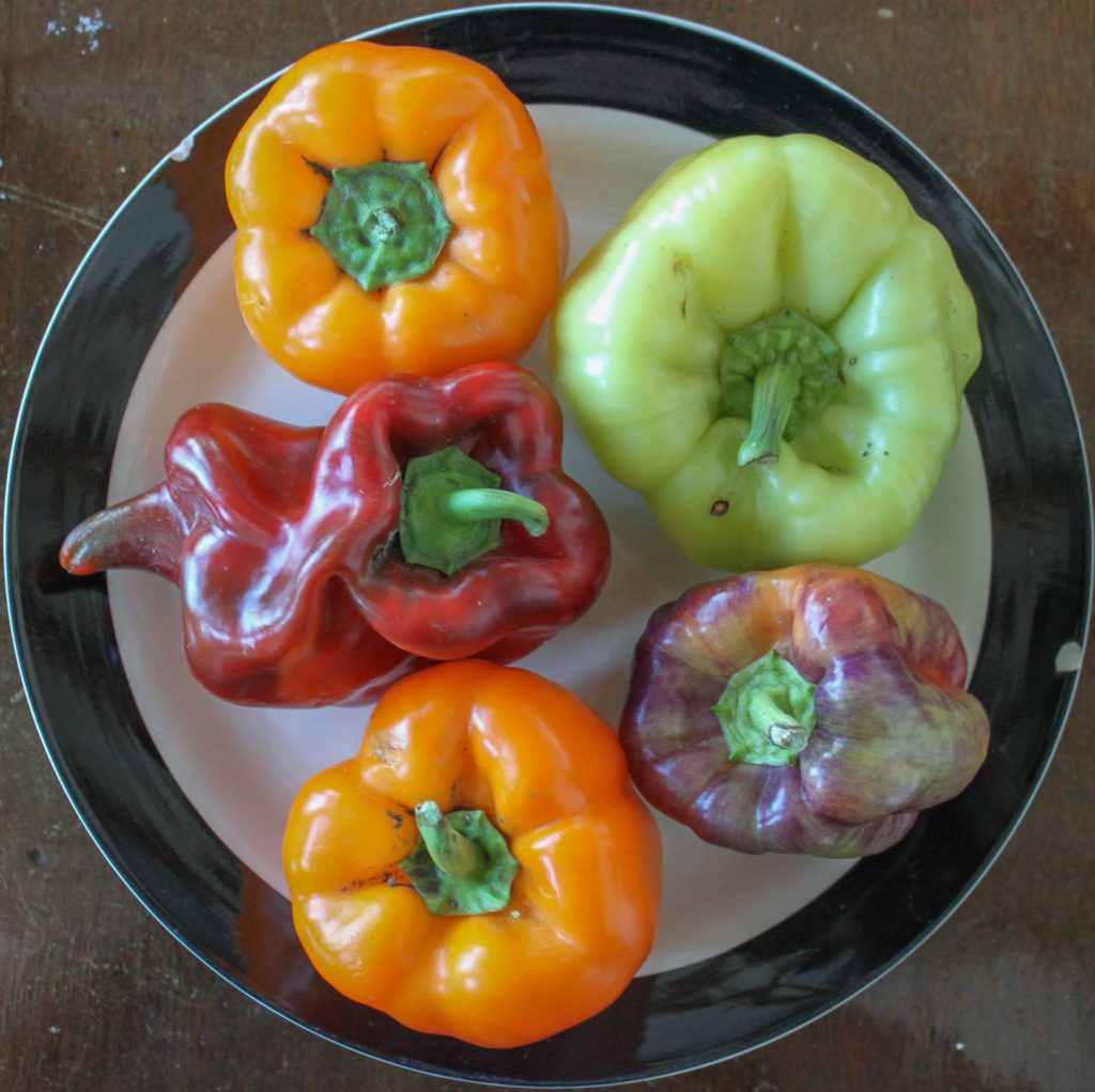 bell peppers 1