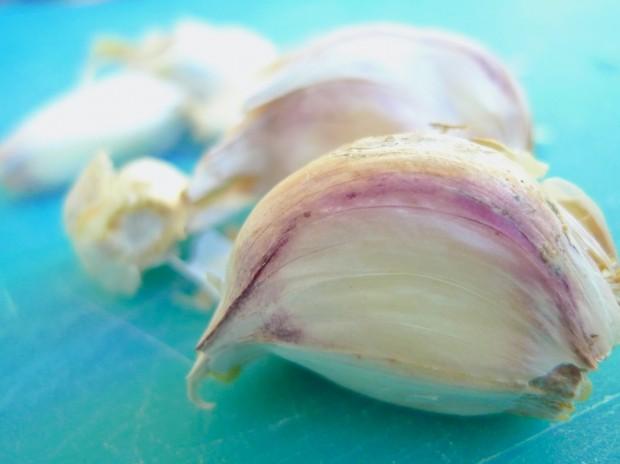 whole garlic 3
