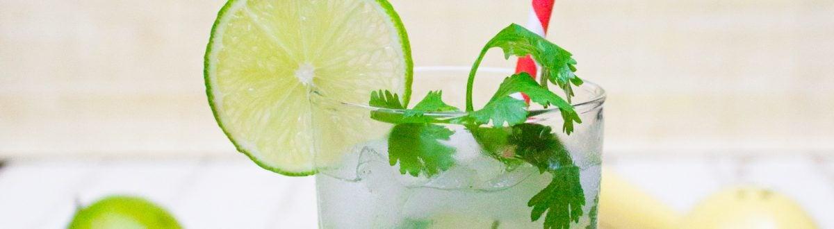 Cilantro Limeade Recipe 1