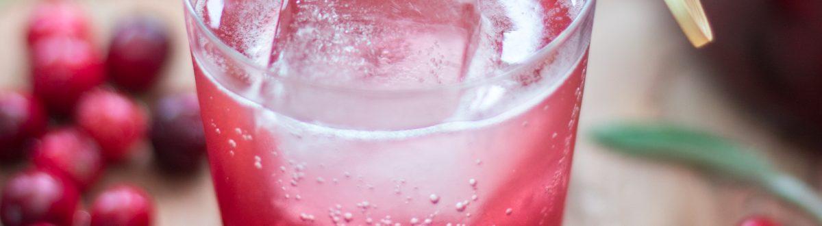 Cranberry Sage Shrub 4
