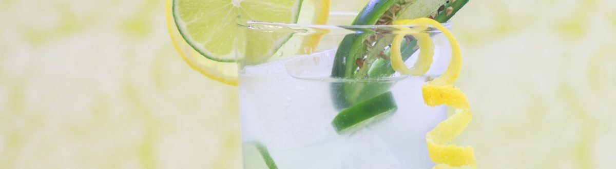 Jalapeno Lemonade with Garnish 3